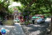 casa-florilor-eforie-nord-4